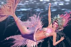 Escape (LiangScorpio) Tags: sl secondlife mermaid aii catwa fallengodsinc
