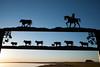 Angus Farm 1.jpg (Dcysiv Moment) Tags: cow sign farm sunrise horse silhouette cowboy coleville saskatchewan canada ca