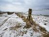 Bleak outlook (Through Bri`s Lens) Tags: sussex lancingring lancingclump snow barbedwire fence feilds farm brianspicer canon5dmk3 canon1635f4