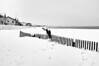 Sous la neige... le sable !!! (Fabrice Denis Photography) Tags: seascapephotography france chatelaillonplage bwphotography charentemaritime coastalphotography frontdemer snow girondine seascapes blackandwhitephotographer sea nouvelleaquitaine monochromephotography beachphotography beach ocean blackandwhitephotography plage noiretblanc coastal oceanphotography blackandwhite monochrome seascapephotographer blackandwhitephotos seascapephotos neige châtelaillonplage fr