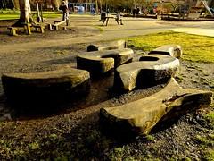 Dendroglyphs for Bench Monday (violetchicken977) Tags: benchmonday stewartpark captainjamescook southseaislandart