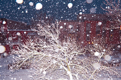 Storm (francois ollivier) Tags: winter snow montreal quebec canada cold snowstorm francoisollivier city ice flaked flakes d850 nikon