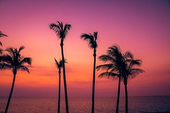 Cuba sunset (corineouellet) Tags: sky colors palmtrees landscape nature canonphoto canon varadero cuba sunrise sunset