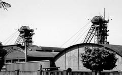 Westfalen (hilgers1944) Tags: ruhrgebiet ruhrrevier ruhrarea ruhrpott kohlenpott schachtanlage steinkohlenzeche steinkohlenbergwerk steinkohlenbergbau zeche pütt fördergerüst förderturm schacht mine mijn mina mines mining coal coalmine coalmining colliery collieries charbon charbonnage chevalement shaft pit pithead headgear headframe mineheads shaftmine shaftmining mineshaft mineshaftheadgear chevalementminedecharbon chevalementpuitsdemine chevalementdemine miningheritage industrialheritage miningengineering industrialhistory industrialarchitecture architecture bw blackandwhite blackwhite old history fosse kopalnia szyb pozo puit industry industrie industria postindustrial endofindustry industrialdecay abandoned urbex minesdecharbon puitsdemines westfalen zechewestfalen bergwerkwestfalen ahlen wilhelmi wilhelmii schachtwilhelmi topf25 bfv25