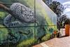 Brigitte Dawson and Melissa Turner Frankston 2018-04-08 (5D_32A0195) (ajhaysom) Tags: aliceinwonderland brigittedawson melissaturner frankston streetart graffiti melbourne australia canoneos5dmkiii canon1635l