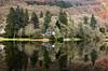 Loch Ard.. (vxisme.) Tags: lochard trossachs forest olympusem1