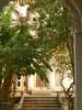 Khajuraho 15 2015in03kjrh_064 (juggadery) Tags: 2015 india madhyapradesh khajuraho architecture building tree