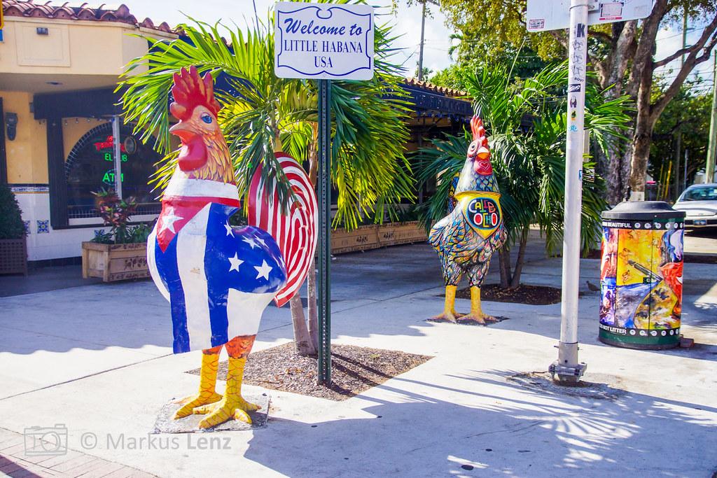 Ungewöhnlich Huhn Küche Miami Fotos - Kücheninsel Ideen - celavivar.com