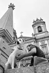 Bom Jesus do Monte, Braga (Gail at Large | Image Legacy) Tags: 2017 bomjesusdomonte braga icethedog portugal gailatlargecom