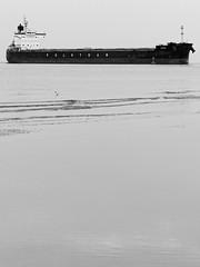 Approaching Rostock Port (alterahorn) Tags: dxo bw nb sw mzuiko40150mm olympusmzuiko mzuiko olympuspenf olympus coast balticsea beach strand ostseeküste ostsee meer bulkcarrier cargovessel vessel schiff rostockport port hafen rostock warnemünde