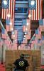 America on Turin (Anteriorechiuso Santi Diego) Tags: america americans turin torino flags