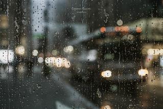 Confetti of Rain and Light New York USA