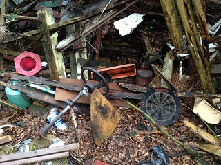 What's in Your Shed?