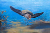 Brigitte Dawson and Melissa Turner Frankston 2018-04-08 (5D_32A0227) (ajhaysom) Tags: brigittedawson melissaturner frankston streetart graffiti melbourne australia canoneos5dmkiii canon1635l