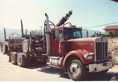 Kenworth Logger (Colorado) (PAcarhauler) Tags: kw kenworth logger semi truck trailer