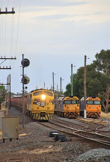 GM10 and GM22 roar past BL27 BL33 and BL31 as it lifts its load out of Murtoa yard