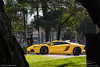 Avt (Andre.Siloto) Tags: lamborghini aventador avt v12 lp7004 lp700 lp 7004 700 4 giallo amarelo amarela yellow ctbaexotics 2017 nikon d3200 d 3200 são paulo sp brasil brazil bra br exotic car