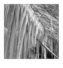 Winterwasser #1 (heute?) Tags: ice blackandwhite fotografie eis