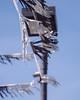 Lennox (Duvalin Papi) Tags: losangeles california sadtographer streetphotography lennox nikond600 vscofilm socal vsco streamers