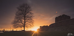 Carlisle Castle & Irish Gate Bridge (►►M J Turner Photography ◄◄) Tags: carlislecastle englishheritage cumbria england uk unitedkingdom carlisle castle cityofcarlisle fortress sunset irishgatebridge castleway tree silhouette