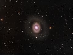 Croc's Eye Galaxy (M94) in LRGB (Carballada) Tags: astronomy deep space astro celestron zwo as1600mmc skywatcher ts sky qhy qhy5iii174 pixinsight galaxy galaxies astrometrydotnet:id=nova2489315 astrometrydotnet:status=solved