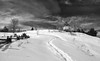 The path (Bmartel2k) Tags: neige sentier path snow moulin windmil clouds nuages fence clôture winter hiver
