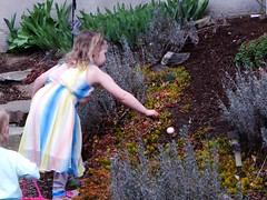 Family Easter Egg Hunt (starmist1) Tags: easteregghunt easter girl garden basket brother visiting dress reaching egg niece march spring flowergarden aniyah