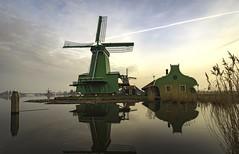 Zaanse Schans windmill at dusk (Dannis van der Heiden) Tags: windmill zaanseschans water dezaan zaan zaandijk sky dusk clouds nikond750 d750 tokina1628mmf28 netherlands morning reed reedstems poelenburg