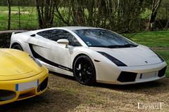 20180408 - Lamborghini Gallardo - S(5565) (laurent lhermet) Tags: lamborghini lamborghinigallardo sel18105f4 sonya6000 sonyilce6000