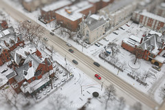 White April in the City of Toy-ronto (Katrin Ray) Tags: whiteaprilinthecityoftoyronto snowydayintoyronto snowmagic mist snow trees jarvismansiondistrict downtown toronto ontario canada katrinray dreamscapesoftoronto tiltshift canon canonphotography eos rebel t6i 750d