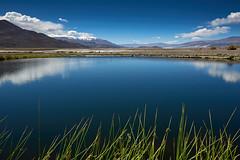 Oasis (Luis_Garriga) Tags: agua laguna salar desierto puna aridez oasis vegetación reflejos nubes cielo montañas andes catamarca