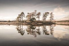Still Waters (David Haughton) Tags: loch tulla highlands scotland scottish lochs scots pine still water calm lake island landscape fineart davidhaughton