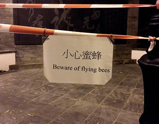 Beware of Flying Bees
