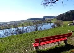 """Bodensee-Hinterland > Schleinsee -der See / Lake Constance area > Schleinsee -the lake / Région du lac de Constance > Schleinsee -le lac (warata) Tags: 2018 deutschland germany süddeutschland southerngermany schwaben swabia oberschwaben """"upper swabiaschwäbisches oberland""""badenwürttemberg""""bodenseebodenseehinterlandlake constance schleinsee see lake nsg naturschutzgebiet """"lake area"""" """"région du lac de constance"""""""