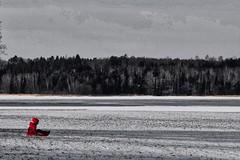 boy in red (Milagros Sahlén) Tags: landscape paisaje invierno vinter winter outdoor 7dwf