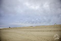 Race Point Beach - Feb 2018  0024-2-Edit (uselessbay) Tags: 2018 beach massachusetts nikon nikond700 places provincetown racepointbeach uselessbayphotography williamtalley d700 digital fullframe landscapes uselessbay usa