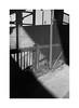 (billbostonmass) Tags: adox silvermax 100 film 129silvermax1100min68f fm2n 40mm ultron sl2 epson v800 boston massachusetts