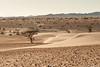 D72_5095 (Tonton-label) Tags: afrique d700 desert nikkor nikon nikonflickraward paysage voyage 80200 montagne sable ciel terre