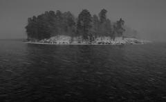 Snow storm (Spotomy) Tags: sea herttoniemenranta suomi finland helsinki shoreline outdoors scenery landscape seascape winter snowing snow snowstorm storm monochrome