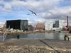 Albert Dock (Al Jones) Tags: albertdock liverpool