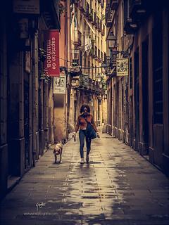 Walking with dog - mod1
