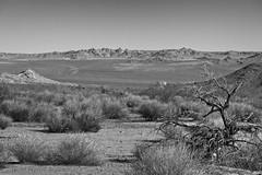 Mojave Desert Vista with Train 7873 A (jim.choate59) Tags: mojavenationalpreserve mojave jchoate on1pics bw blackandwhite monochrome desert vista train scale barren dry hot scrub mountains kelso kelsocalifornia rx100