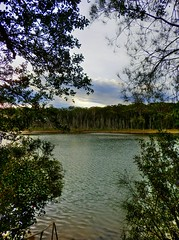 Secret view III (elphweb) Tags: hdr highdynamicrange nsw australia seaside tree forest bush bushy scrub trees woods vegetation green greenery lake waterway lakeside water