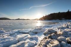Dégivrage (NeoNature) Tags: canon nature canada sun soleil jour day glace ice spring printemps pines bic landscape paysage saintlaurent coast seascape