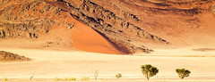 Rocky Dunes and Sands (Beppe Rijs) Tags: sossusvlei natur namibia afrika africa desert wüste landscape landschaft rock fels berge mountain color farbe abstrakt abstract blue blau yellow gelb gras grass nationalpark nature np namib
