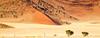 Rocky Dunes and Sands (Beppe Rijs) Tags: sossusvlei natur namibia afrika africa desert wüste landscape landschaft rock fels berge mountain color farbe abstrakt abstract blue blau yellow gelb gras grass nationalpark nature np namib