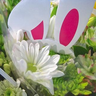 supermarket bouquets