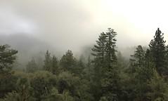 Afternoon mist in Idyllwild, CA (p.bjork) Tags: idyllwild california sanjacinto fog tahquitzpeak mountsanjacinto