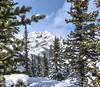 Bow summit and Peyto Canadian Rockies (gri_mountainlakes) Tags: peytolake canadianrockies snow banffnationalpark bowsummit