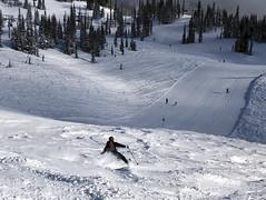 Powder-ish (Ruth and Dave) Tags: brian skier whistler whistlermountain whistlerblackcomb harmonypiste harmonybowl skiresort slope offpiste skiing powder contrast light shadow piste skirun groomed